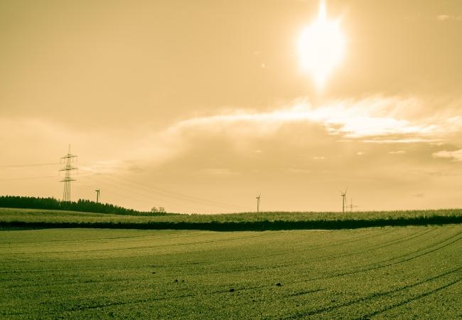 Свободные земли в Курганской области ждут своих новых хозяев