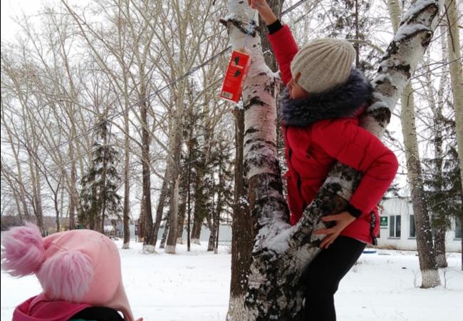 С наступлением зимы каждый год российские экологи призывают население помочь пернатым - мастерить и развешивать кормушки.