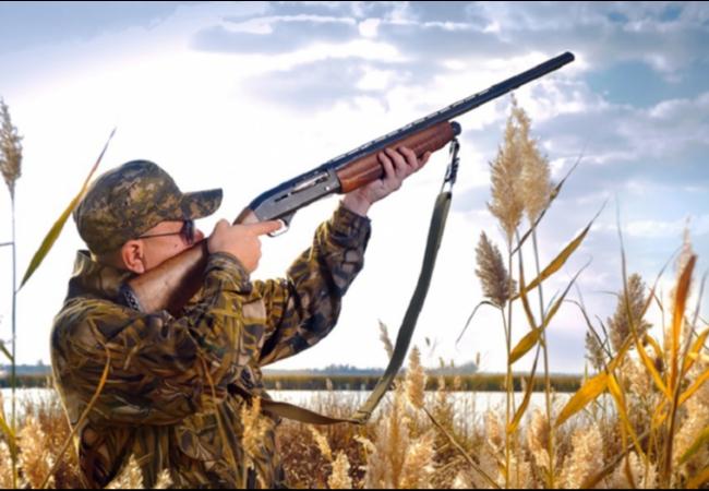 Второй этап подготовки материалов о лимите добычи охотничьих ресурсов на предстоящий сезон